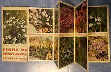 Fiori di montagna da foto naturali foto edizioni Orempuller Trento Anni '60 '70
