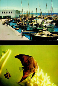 MALDIVES 1972 INNER HARBOUR BAT FISH 2 A/M PPC TO USA W/INT'L BOOK YEAR 4v