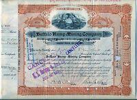 Buffalo Hump Mining Company Stock Certificate New York