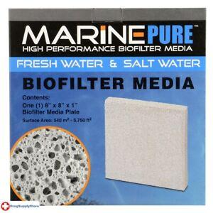 "RA MarinePure Biofilter Media by CerMediBiofilter Media Plate - 8"" x 8"" x 1"""