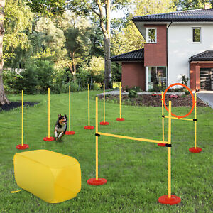 Outdoor 4 PCs Dog Pet Agility Training Equipment Backyard Starter Course Set