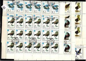 / 36X RUSSIA 1982 - CTO - BIRDS - SHEETS BENT