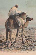 Carte Postale ancienne Dromadaire dans le Désert Bone Constantine ( Algérie )