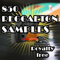 850 Reggaeton Samples & Loop, PC,Audio, Regeton, Create Music. Digital Pack Pro