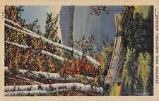 Cheboygan Michigan Row Boat On Land Greeting Antique Postcard K57648