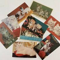 Vintage Mid Century Fluffy Persian Tabby Cat Kitten Postcard Lot Of 9 Colorful