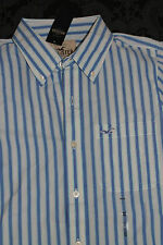 Hollister Men's Shirt Blue White Size M New With Label