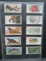 WILLS WONDERS OF THE SEA 1928 SET 50  /EXCELLENT SEE ALL PHOTO'S