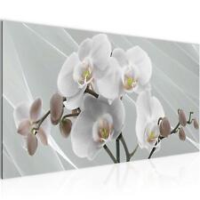 WANDBILDER XXL BILDER Blumen Orchidee VLIES LEINWAND BILD KUNSTDRUCK 203012P