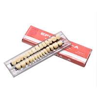 28pcs/ set Acrylic Resin Denture Dental Full Set Teeth Upper Lower Shade 23# A3