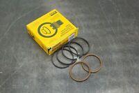 Parker PR252H0005 Viton Piston Ring Kit