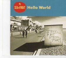 (EY471) Sea Fruit, Hello World - 1999 DJ CD