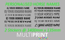 PERSONALISED HORSE NAME GRAPHICS STICKERS DECALS VINYL HORSE BOX LORRY HOR8