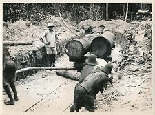 GABON c. 1930 - Exploitation de Bois d'Okoumé Transport des Billes - Div 7122