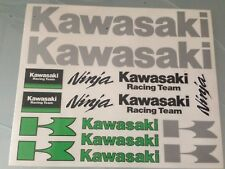 Adesivo adesivi carena carene moto Kawasaki Racing Team Ninja 16 pezzi