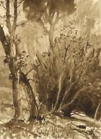 Myles Tonks RI RBA, Sepia Woodland – Early 20th-century watercolour painting