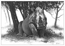 Rhino wall art print picture Ltd Ed wildlife animal poster sketch pencil drawing