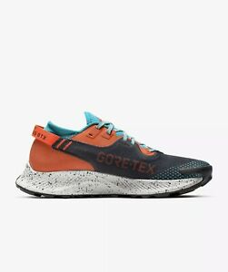 Size 10 - Nike Air Zoom Pegasus Trail 2 Gore Tex DH0202 001 Smoke Crimson Red