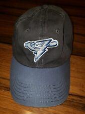 Vtg American Needle 1918 Thunder minor league baseball cap hat