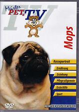 Mops - Meister PETz TV *DVD*NEU* Ratgeber - Hund