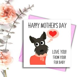 Mothers Day Card From The Dog Pet Special Card For Human From Fur Baby