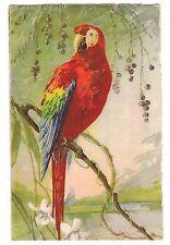 Red Parrot in Wild Birds Edition Stehli # 119 Switzerland Postcard Unused