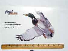 MALLARD DUCK WILDLIFE BIRD HUNTING DECAL STICKER AL AGNEW - REVERSE AVAILABLE