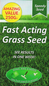 FAST ACTING Grass Seeds for Lawn/Shake n' rake/Covers 15sq m Results in 1 Week!