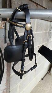 Black Leather Shetland Harness