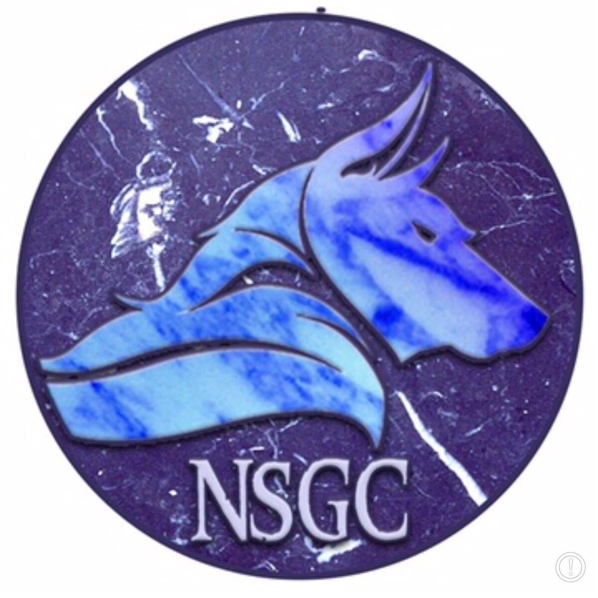 nsgcgaming