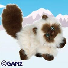 Webkinz Adopt Pet Himalayan Cat Sealed Tag Unused Code Ganz Kitty New
