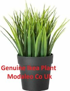 IKEA FEJKA Artificial potted plant, in/outdoor grass, 9 cm 004.339.42 UK-ZI