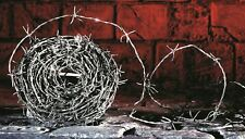Halloween Decorative WW2 30m Roll Realistic Fake Barbed Wire String Decoration