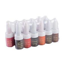 Golden Rose Maquillage tatouage encre Set 12 couleurs permanente 10ml/bouteille