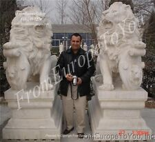THE BEST 16000 LB. HAND CARVED MARBLE ROARING LIONS CN1