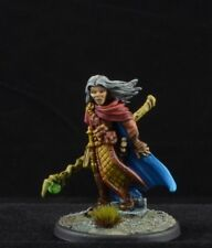Painted Damar Hawkwinter, Adventuring Wizard from Reaper Miniatures mage D&D
