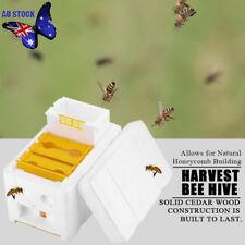 Auto Honey Beehive Frames Beekeeping Kit Bee Hive King Box Pollination Box Tool