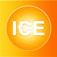 IceOrange.com Ice Orange! Zesty Pronounceable Brandable Two Word Domain Name