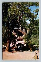 Chimayo NM, El Santuario Shrine, Chrome New Mexico Postcard