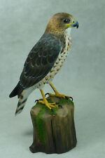 Broad-winged Hawk Original Wood Carving