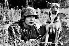 1943 German Sniper and Dog PHOTO Wehrmacht Waffen ss World War 2 Soldier Germany