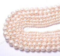 """16"""" Natural Freshwater White Pearl Oval Rice Beads 4MM 6MM 8MM 10MM 12MM"""