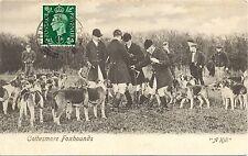 Jagd, Fuchsjagd, Jagdhunde, 1937