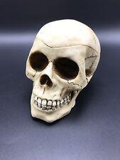 Halloween Skull Human Fantasy 1999 WUI Ashtray 99 WUI Skull