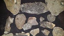2 LB Kimberlite - Diamond Bearing - Redfeather Lakes - Colorado