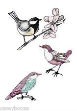 Clair Caoutchouc Timbres-Botanique Oiseaux - 1019-NEW RELEASE