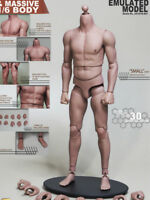 """1/6 JXtoys S01 Male Asian Muscular 12"""" Figure Body For Bruce Lee BW/Neck"""