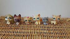 Little Pet Shop Bundle Gatto Cane Glitter HASBRO FIGURE LOTTO UNDICI RARA/ritirato