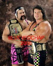 STEINER BROTHERS RICK & SCOTT WRESTLER 8 X 10 WRESTLNG PHOTO WWF WCW