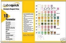 10 pz. - (2x5pcs) delle analisi delle urine 10 parametro Professional / GP urina strisce per test